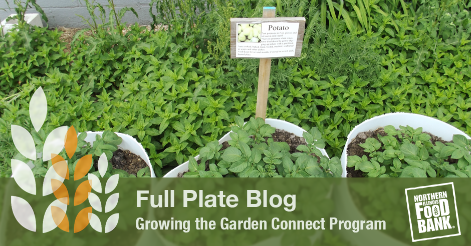 garden connect program_blog