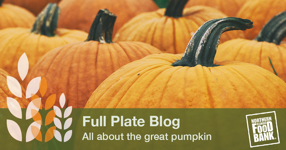 all about pumpkins_blog