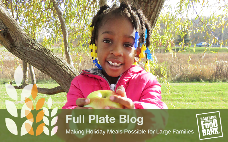 Making Holiday Meals Possible for Families