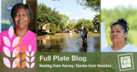 healing hurricane harvey_blog