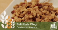 cranberries anytime_blog