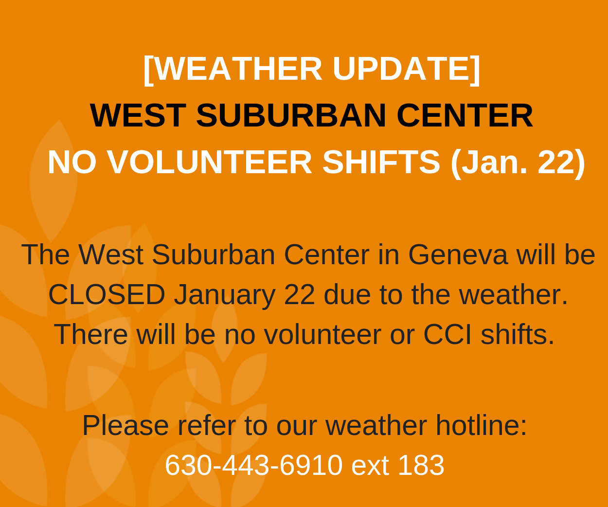 There will be no volunteer or CCI shifts on January 22 due to the weather. Call for updates 630-443-6910 ext. 183